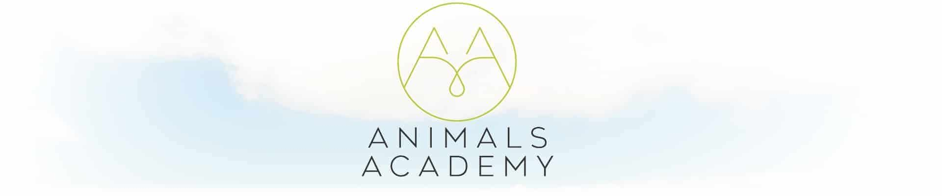 Animals Academy